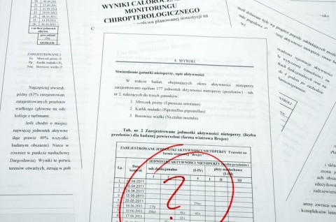 Audyt chiropterologiczny due diligence