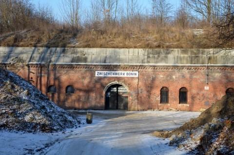 Inwentaryzacja nietoperzy w zimowiskach - fort Va