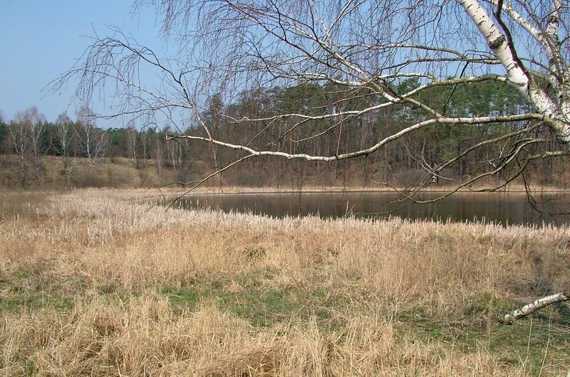 Plan ochrony dla rezerwat przyrody - krajobraz