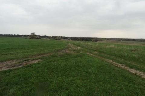 Farma wiatrowa Ułęż - monitoring chiropterologiczny