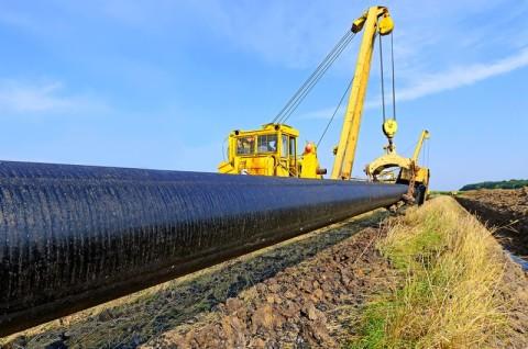 Gazociągu wysokiego ciśnienia relacji Lwówek-Odolanów - inwentaryzacja przyrodnicza
