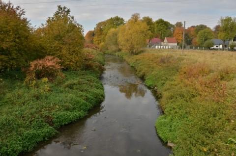 Rzeka Piława - inwentaryzacja przyrodnicza
