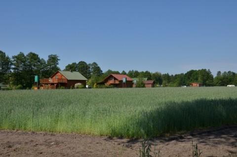 Stacja transformatorowa, linie kablowe oraz przyłącza do działek w gminie Przemęt - ocena oddziaływania na obszar Natura 2000