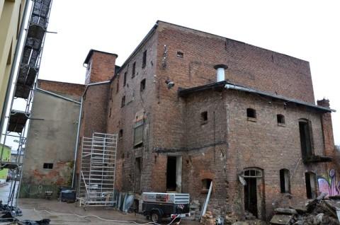 Zabudowania dawnych browarów w Grodzisku Wielkopolskim - inwentaryzacja przyrodnicza