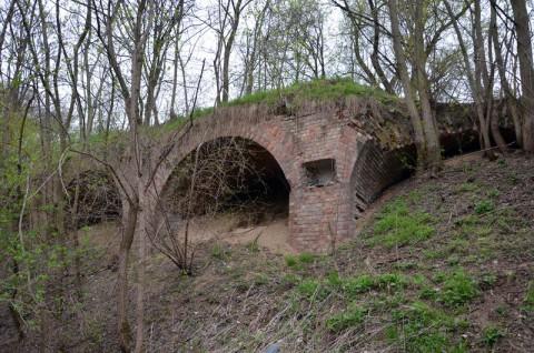 Poznańska Spalarnia Odpadów - ocena oddziaływania na obszar Natura 2000