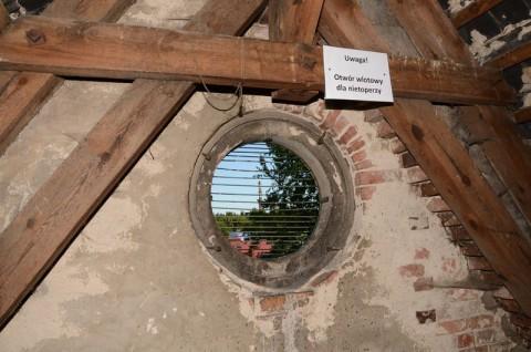"""Obszar Natura 2000 """"Sieraków"""" - monitoring nietoperzy GIOŚ"""