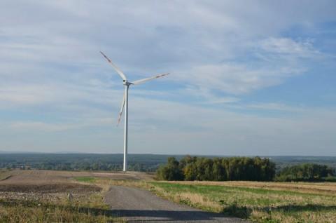 Farma wiatrowa Jarczów - monitoring porealizacyjny nietoperzy