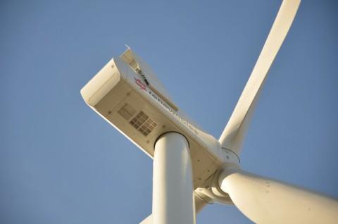 Farma wiatrowa Tyszowce II - monitoring porealizacyjny nietoperzy