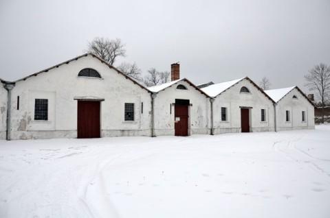 Muzeum Staropolskiego Zagłębia Przemysłowego w Sielpi Wielkiej - ekspertyza chiropterologiczna