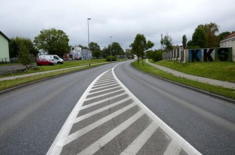 Układ komunikacyjny Kalisza na odcinku od ulicy Szerokiej do ulicy Łódzkiej - inwentaryzacja przyrodnicza