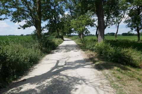 Droga gminna Kajew-Wszołów - inwentaryzacja przyrodnicza