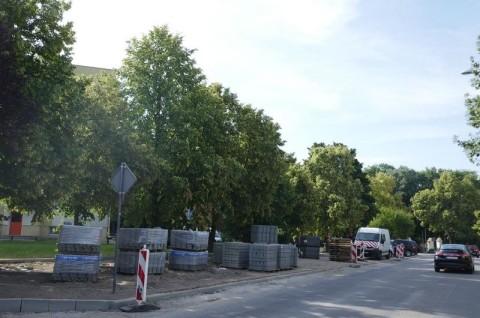 Stacja paliw w Mechlinie - ekspertyza ornitologiczna