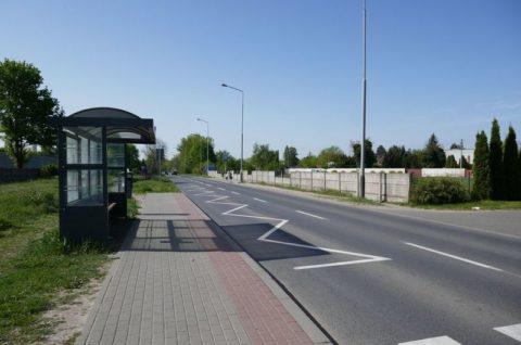 Ulica Druskienicka w Poznaniu - nadzór ornitologiczny