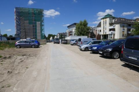 Budynek mieszkalny wielorodzinny z garażem podziemnym oraz niezbędną infrastrukturą techniczną przy ulicy Kórnickiej w Poznaniu - inwentaryzacja przyrodnicza