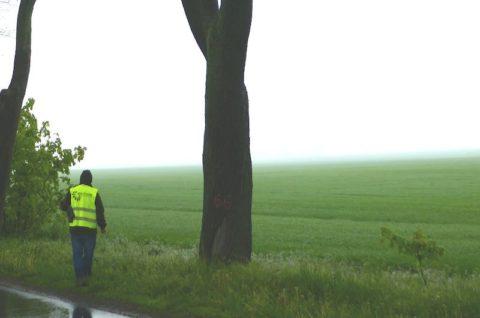 Droga powiatowa nr 2403P Więckowice-Dopiewo - nadzór ornitologiczny