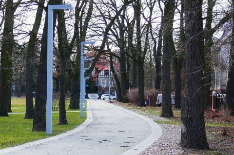 Historyczny zespół urbanistyczny WuWa przy ulicy Wróblewskiego we Wrocławiu - inwentaryzacja przyrodnicza
