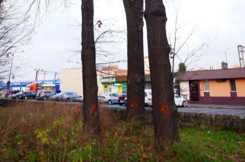 Przebudowa drogi pożarowej do budynku sekcji eksploatacji PKP Polskie Linie Kolejowe S.A. oraz budowa parkingu dla przewoźników przy ulicyDworcowej w Lesznie - inwentaryzacja dendrologiczna