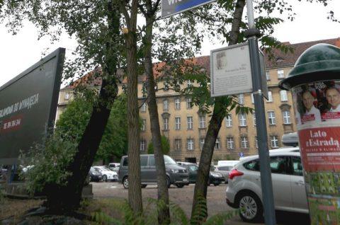 Budynek biurowy przy Alei Niepodległości w Poznaniu - inwentaryzacja przyrodnicza