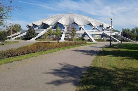 Hala Widowiskowo-Sportowa Arena - opinia ornitologiczna