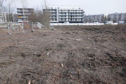 Budynki mieszkalne wielorodzinne wraz z garażem podziemnym, zagospodarowaniem terenu obiektami budowlanymi, niezbędną infrastrukturą techniczną i towarzysząca przy ulicy Anny Jantar w Poznaniu - Inwentaryzacja przyrodnicza