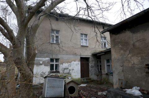 Budynki przy ulicy Romana Dmowskiego w Poznaniu - Inwentaryzacja dendrologiczna