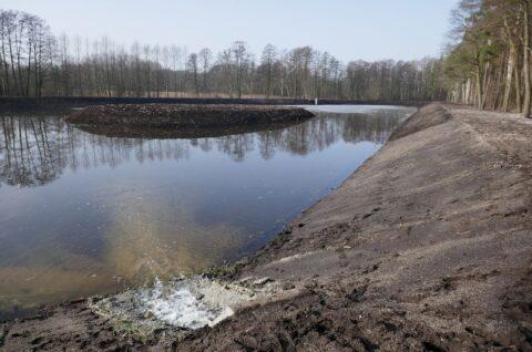 Zbiornik retencyjny w Leśnictwie Mieleszynek - Nadzór herpetologiczny