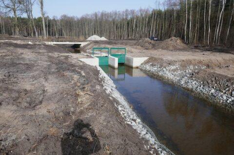 Zbiornik retencyjny w Leśnictwie Sokolniki - Nadzór herpetologiczny