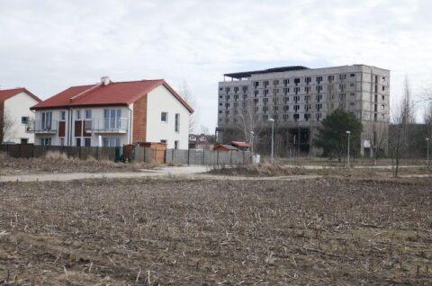 Zespół budynków mieszkalnych wielorodzinnych z garażami podziemnymi oraz budynku usługowo-mieszkalnego wielorodzinnego z garażem podziemnym przy ulicy Koszalińskiej w Poznaniu - Inwentaryzacja dendrologiczna
